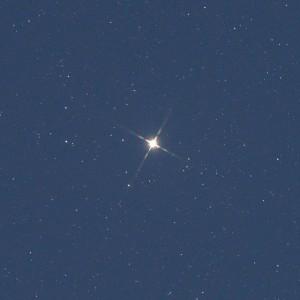 写真6-提出DSC_8107_カペラ