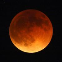 写真1皆既月食